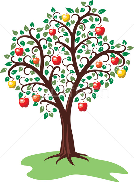 apple tree with fruits Stock photo © freesoulproduction