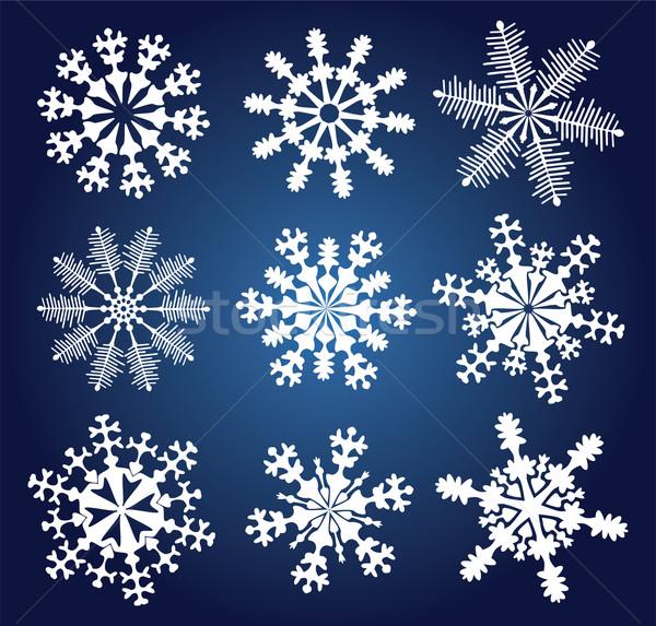 Vetor flocos de neve conjunto natureza projeto arte Foto stock © freesoulproduction