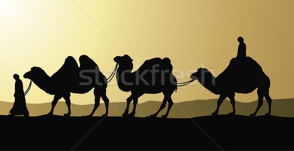 Tevék sivatag naplemente nyár fekete sziluett Stock fotó © freesoulproduction