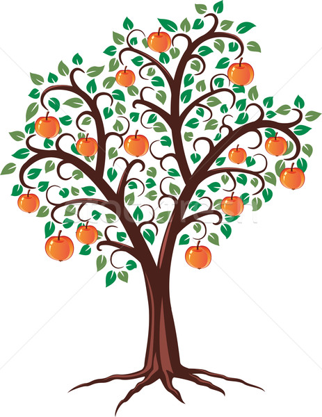 Appelboom vector ontwerp vruchten hout appel Stockfoto © freesoulproduction
