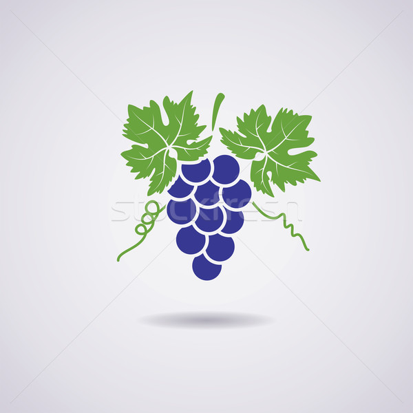 vector icon of grapes Stock photo © freesoulproduction