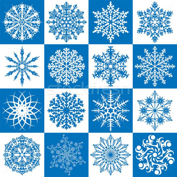 Wektora zestaw 16 płatki śniegu kwiat charakter Zdjęcia stock © freesoulproduction