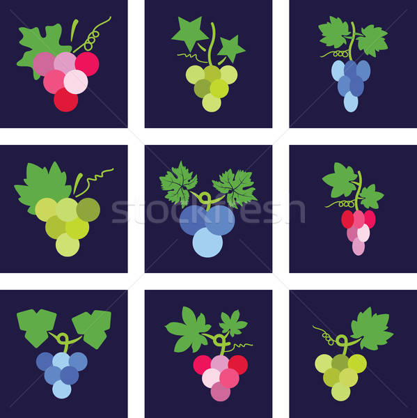 vector colorful icons of grapes Stock photo © freesoulproduction