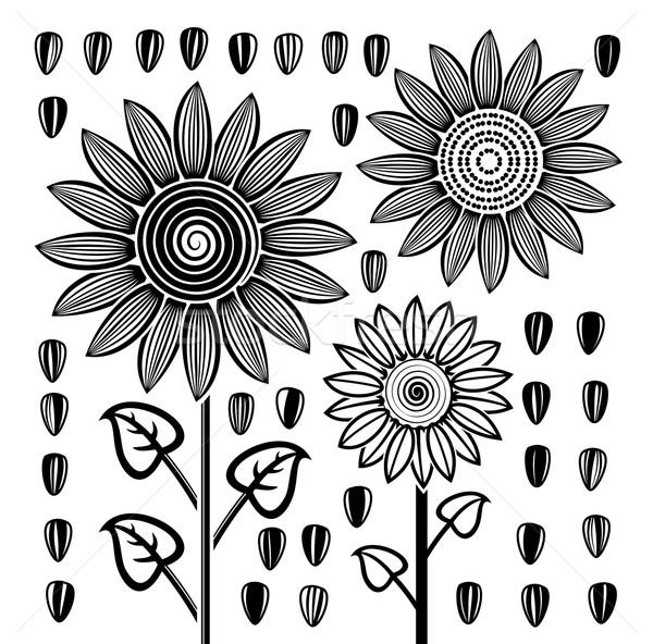 ベクトル 黒白 ひまわり 種子 定型化された 図面 ストックフォト © freesoulproduction