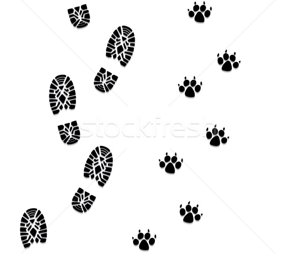 vector foot prints of man and dog  Stock photo © freesoulproduction