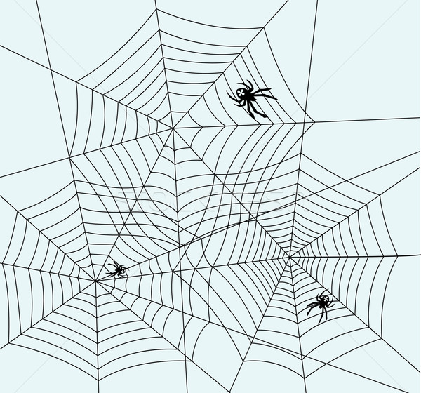 vector spiders and webs Stock photo © freesoulproduction