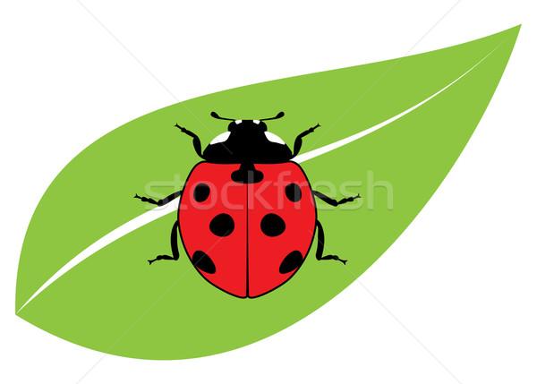 вектора красный Коровка зеленый лист весны лист Сток-фото © freesoulproduction
