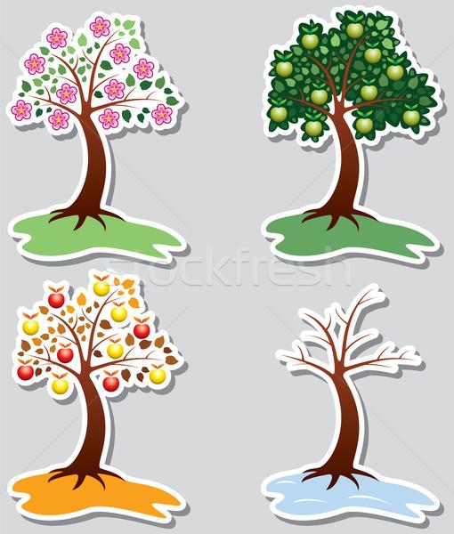 リンゴ 木 四季 ベクトル セット 草 ストックフォト © freesoulproduction