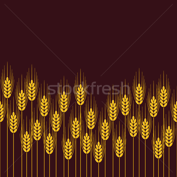 vector seamless repeating wheat, rye or barley field pattern Stock photo © freesoulproduction
