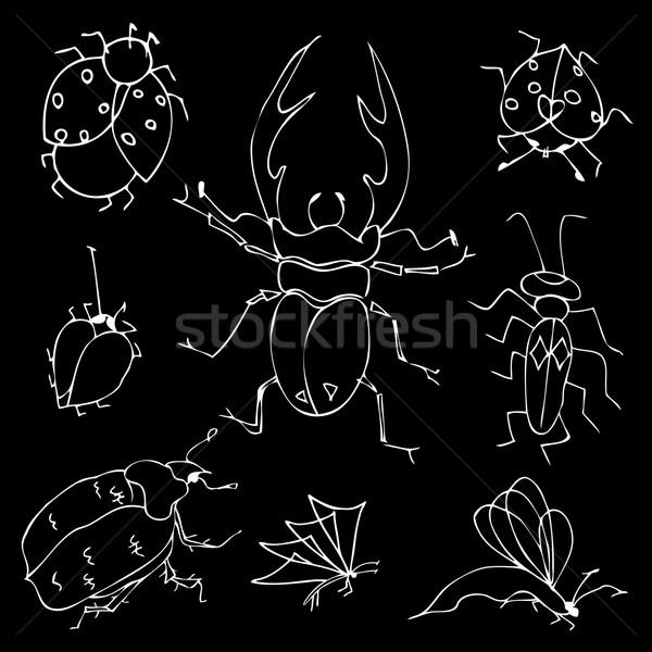 Pillangók bogarak szett toll csoport hangya Stock fotó © frescomovie
