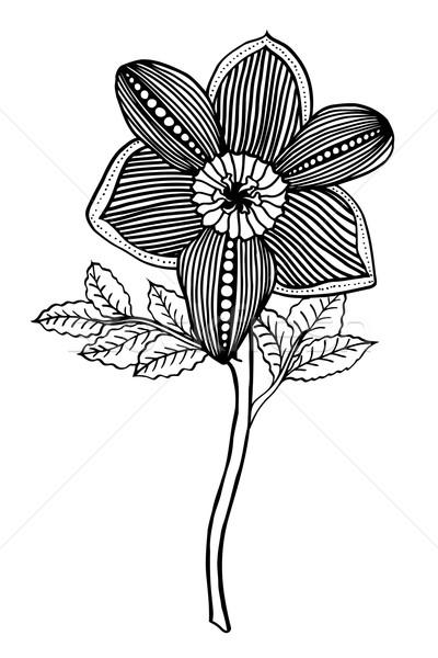 çiçek tek renkli kroki vektör yalıtılmış Stok fotoğraf © frescomovie
