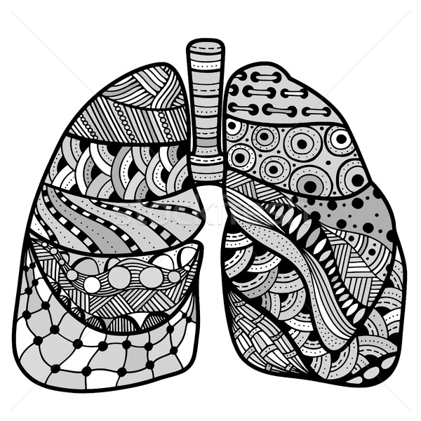 Hand drawn sketched lungs Stock photo © frescomovie