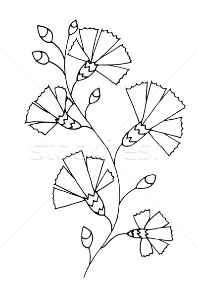 çiçek vektör güzel tek renkli çiçek Stok fotoğraf © frescomovie