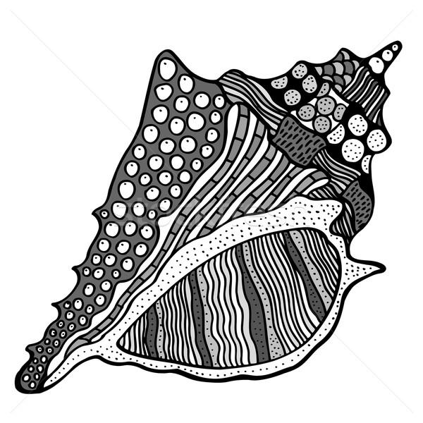 Stilizált kagyló kézzel rajzolt vízi firka rajz Stock fotó © frescomovie