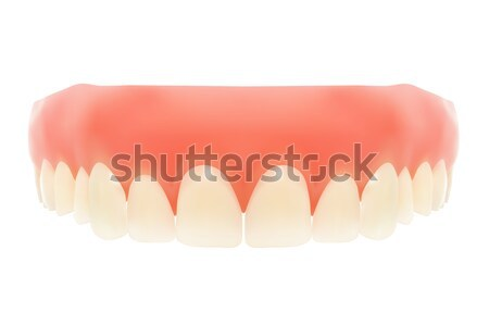 Human jaw. Stock photo © frescomovie