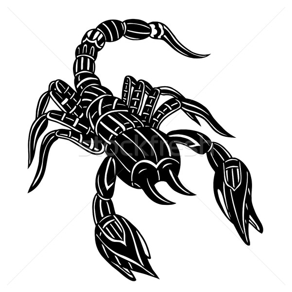 Vector of Abstract scorpion Stock photo © frescomovie