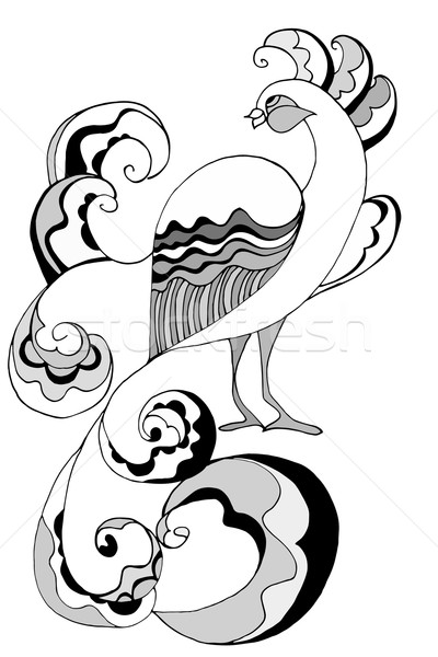 Tavuskuşu kuş yalıtılmış beyaz doku kalem Stok fotoğraf © frescomovie