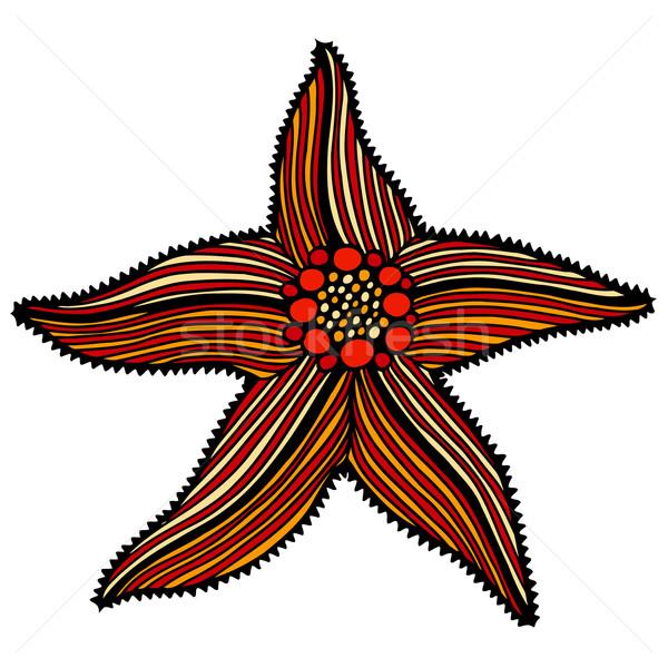 Esboço ilustração starfish praia água Foto stock © frescomovie