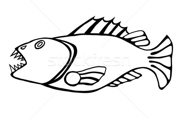 toothy fish Stock photo © frescomovie