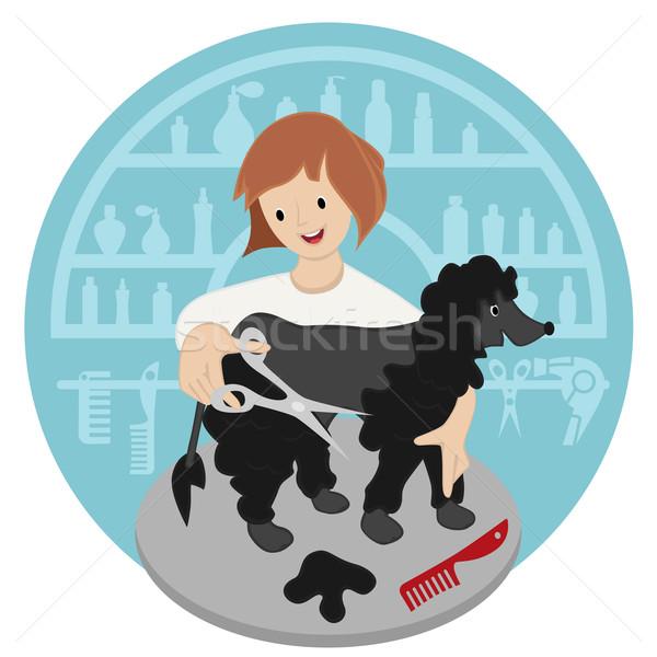 Cabeleireiro animal de estimação mulher cão imagem cabelo Foto stock © frescomovie