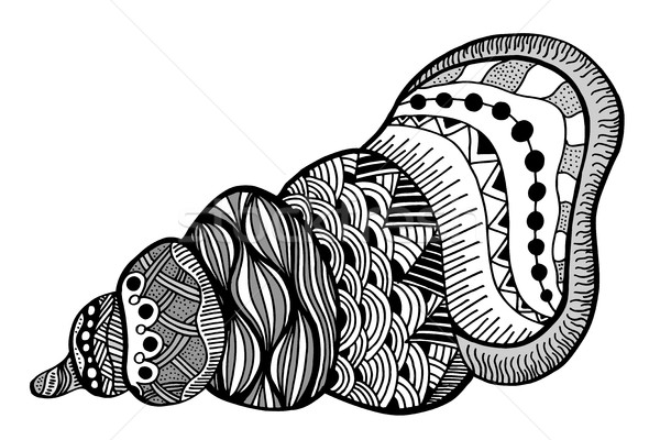 Hand Drawn seashell Stock photo © frescomovie