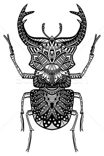 Kézzel rajzolt bogár feketefehér stilizált firka kisebbségi Stock fotó © frescomovie