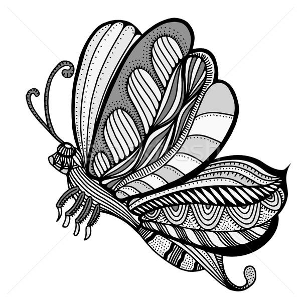Schmetterling Skizze Vektor Hand gezeichnet isoliert weiß Stock foto © frescomovie