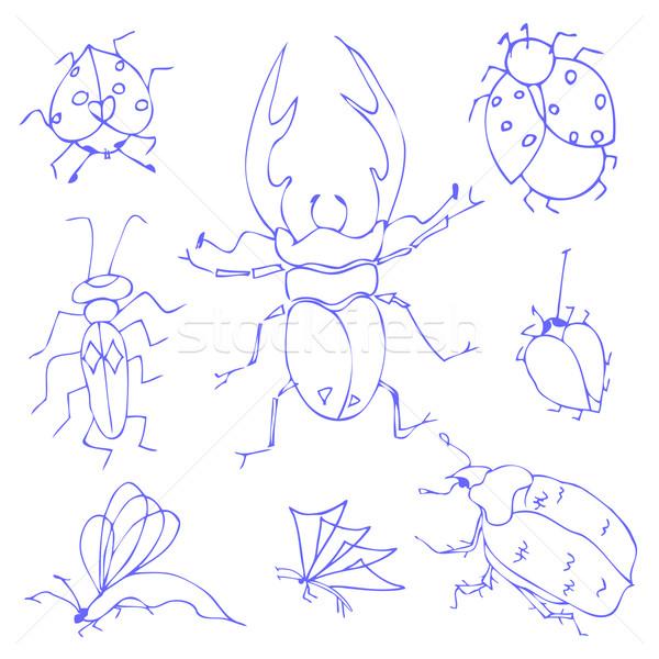 Insecten schets decoratief libel vliegen Stockfoto © frescomovie