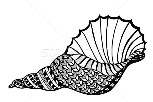 Estilizado concha aquático rabisco esboço Foto stock © frescomovie