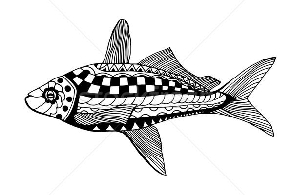 Hand gezeichnet Fisch stilisierten Doodle isoliert weiß Stock foto © frescomovie