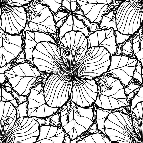 Monochroom vector ornament bloemen Stockfoto © frescomovie
