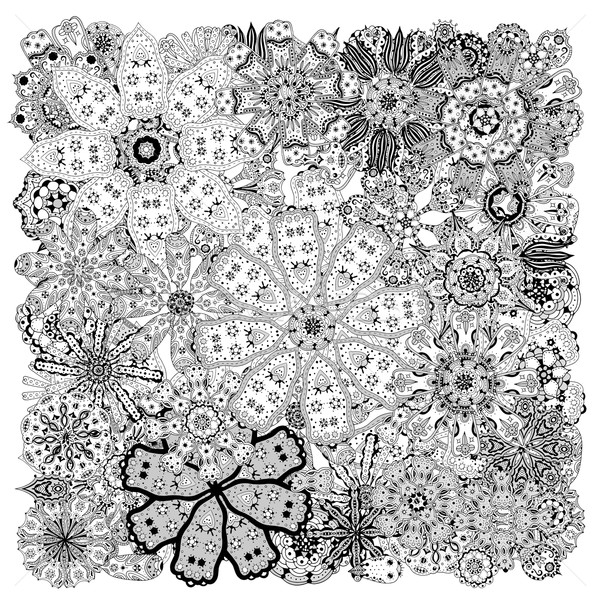 Different doodle flowers Stock photo © frescomovie