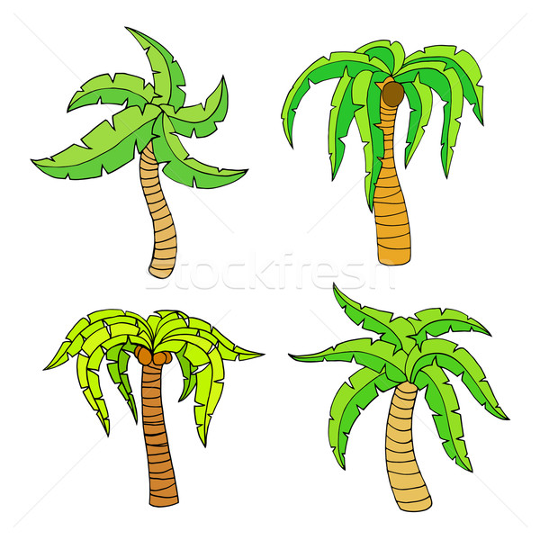 palm tree Stock photo © frescomovie