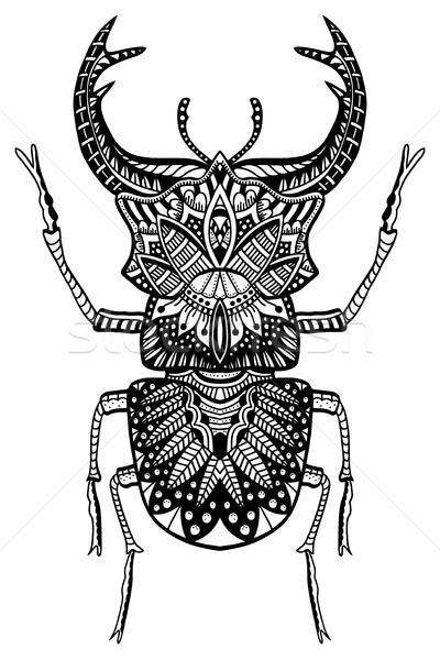 Besouro preto e branco estilizado rabisco étnico Foto stock © frescomovie