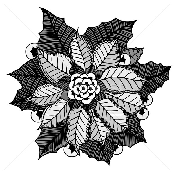 Monocromático natureza projeto folha arte folhas Foto stock © frescomovie