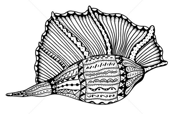 Gestileerde shell aquatisch doodle schets Stockfoto © frescomovie