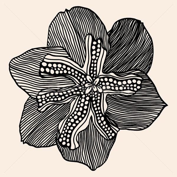 Monochrome abstract doodle flowers Stock photo © frescomovie
