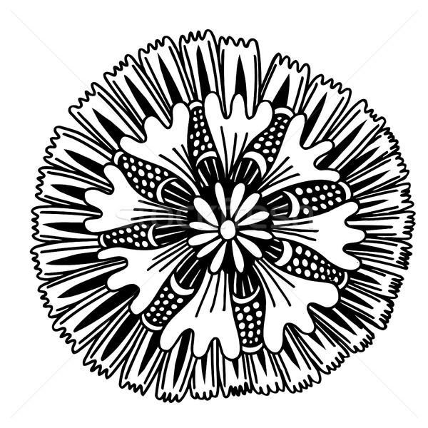 Circle summer doodle flower ornament. Stock photo © frescomovie
