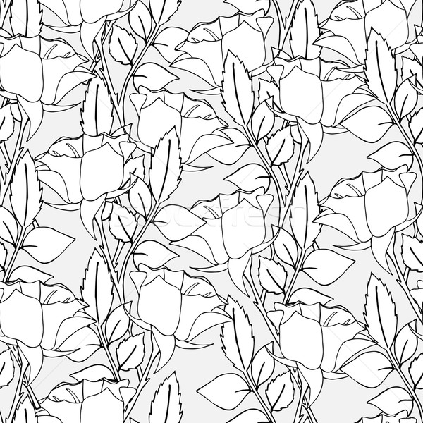 Stock photo: Seamless pattern of roses