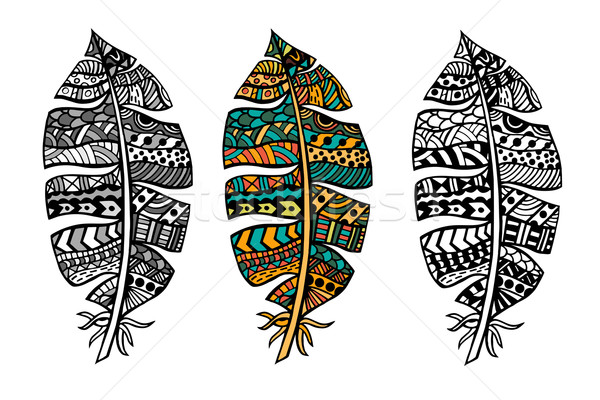 Zentangle stylized feathers Stock photo © frescomovie