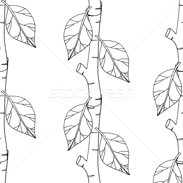 Padrão monocromático primavera moda Foto stock © frescomovie