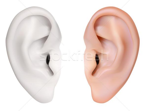 Umani orecchio vettore isolato bianco corpo Foto d'archivio © frescomovie