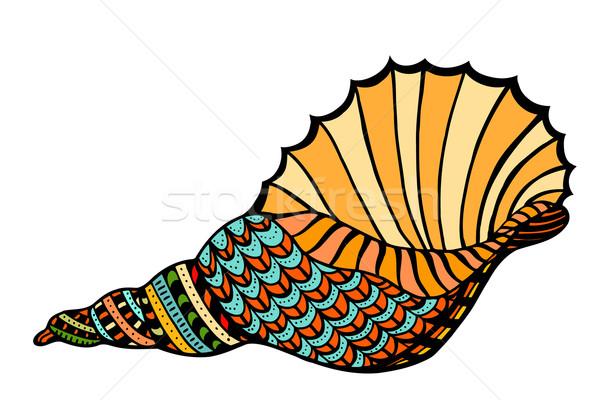 Seashell. Vector illustration.  Stock photo © frescomovie