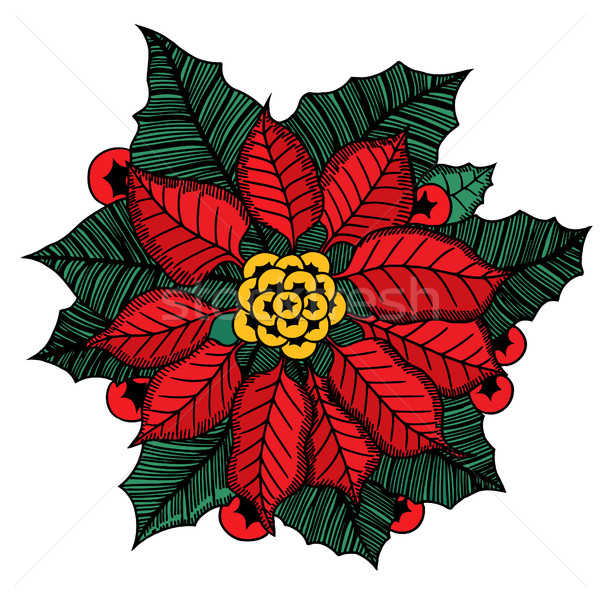 Christmas flower poinsettia Stock photo © frescomovie
