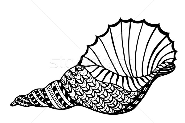 Stilizzato shell acquatico doodle sketch Foto d'archivio © frescomovie