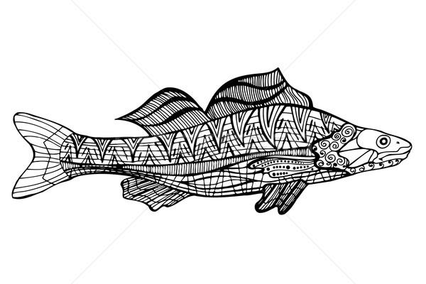 Akvaryum Balığı Stok Vektörler Ilüstrasyonlar Ve Küçük Resimler