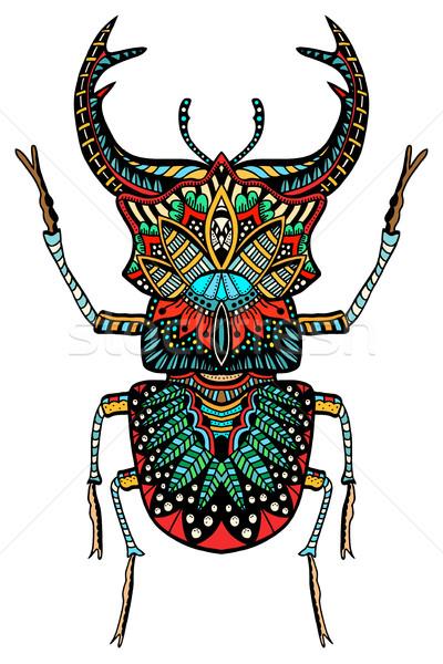 вектора цвета жук стилизованный рисованной книгах Сток-фото © frescomovie