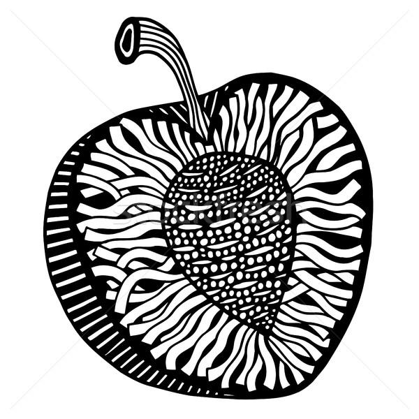 Hand drawn peach Stock photo © frescomovie