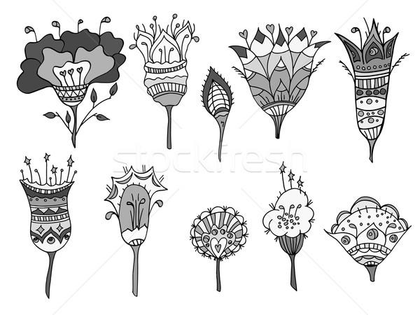 Monocromático rabisco flores conjunto flor Foto stock © frescomovie
