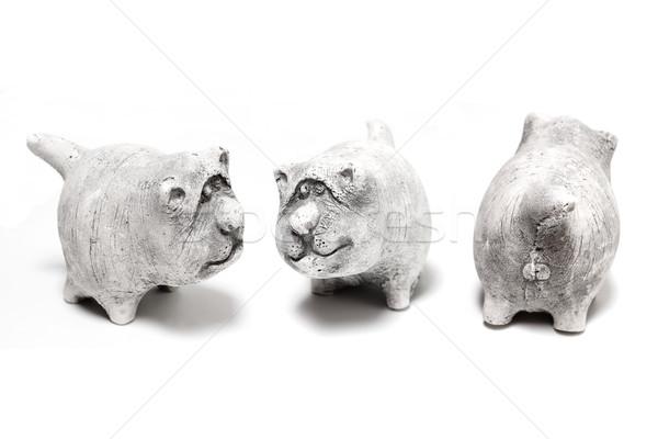 cat Stock photo © frescomovie
